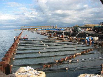 大井川港岸壁工事